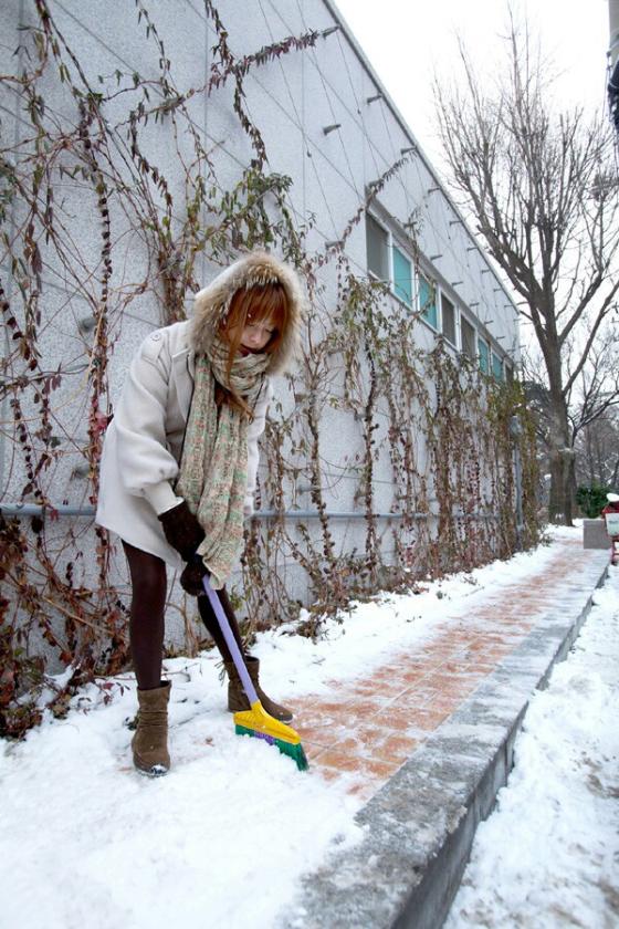 snowclear1